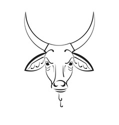 head of the Indian sacred cow zebu vector image
