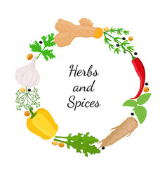 hebs spices - arugula garlic basil thyme dill vector image