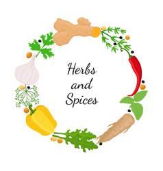 Hebs spices - arugula garlic basil thyme dill vector