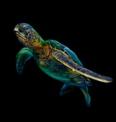 sea turtle realistic artistic colored drawing vector image
