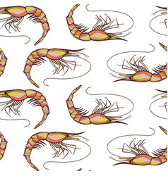 Seamless shrimps background pattern vector