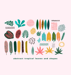 Set of abstract tropical leaves vector