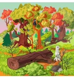 Forest And Animals vector image