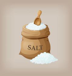 sea salt in jute sack vector image vector image