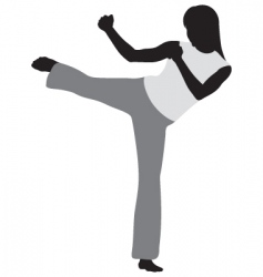 martial art vector image vector image