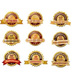 Anniversary gold badge set vector image