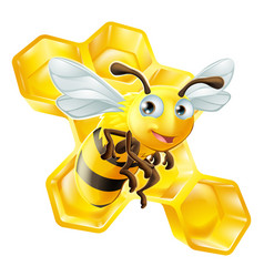 Cartoon bee and honey comb vector