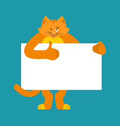 cat holding banner blank pet and white blank vector image