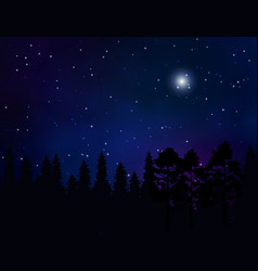 forest landscape and starry night sky vector image