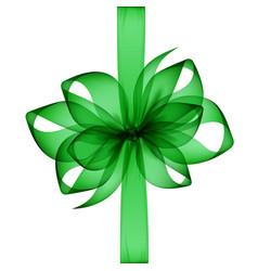 Green emerald transparent bow and ribbon top view vector