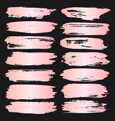 rose pink brush stroke vector image