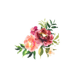 Watercolor floral set bouquet with red orange vector
