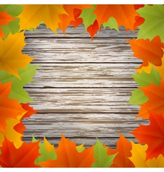 Golden autumn frame vector image