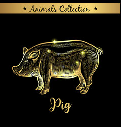 Golden and royal hand drawn emblem of farm pork vector