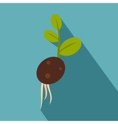 Green potato sprout from the root icon flat style vector