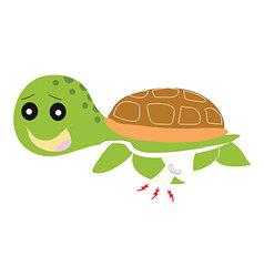 green turtle painful isolated vector image