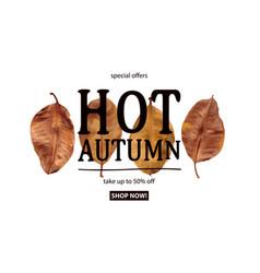 Hot autumn sale vector