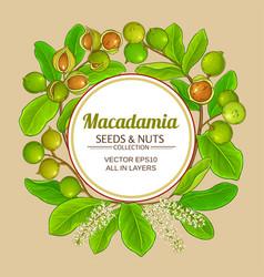 macadamia branches frame vector image