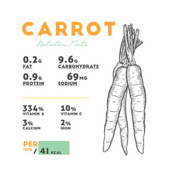 Nutrition facts raw carrot vector