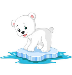 polar bear cartoon vector image