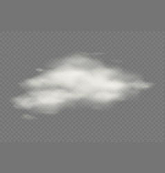 realistic transparent isolated cloud vector image
