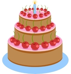 Sweet Chocolate Birthday Cake vector image