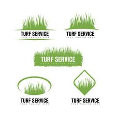 Turf lawn and garden care company creative design vector