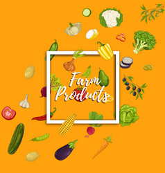 farm product banner with vegetable vector image vector image