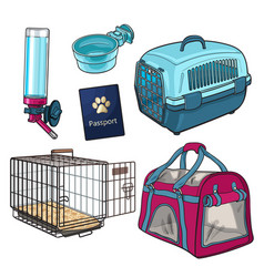 sketch hand drawn pet transport travel set on vector image vector image
