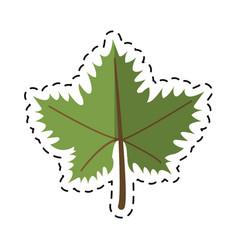 cartoon leave grape wine symbol vector image