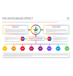 Entourage effect horizontal business vector