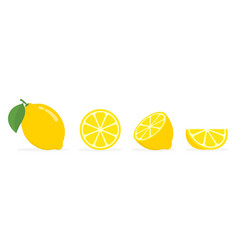 fresh lemon fruits collection of vector image