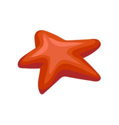 Red starfish invertebrate sea creature vector