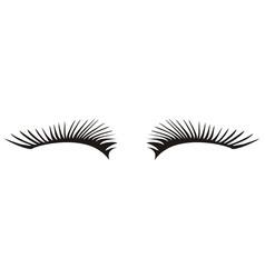 black eyelashes icon on a white background vector image vector image