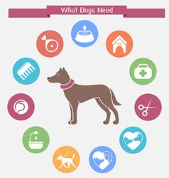 Dog infographics and icon set vector image vector image
