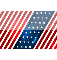 usa backgrounds style vector image vector image
