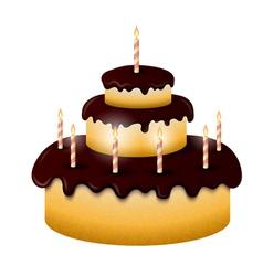 Celebratory chocolate cake with burning candles vector image