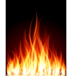 Burning Flames Background vector image vector image