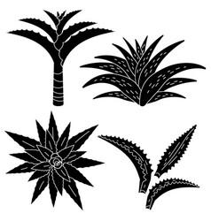 aloe vera icon set simple style vector image