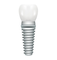 Dental implant model closeup cut away side view vector