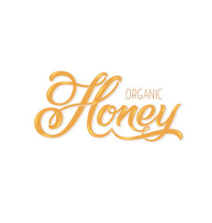 hand drawn lettering organic honey elegant modern vector image