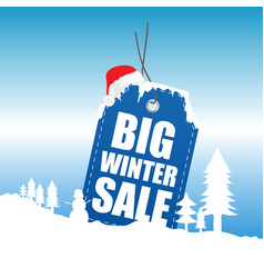 tag winter sale with snow design vector image