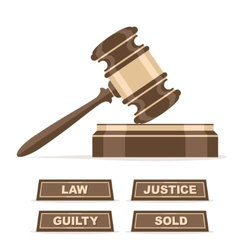 Judges gavel or auction hammer vector image vector image