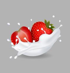 juicy sweet strawberry in milk splash vector image