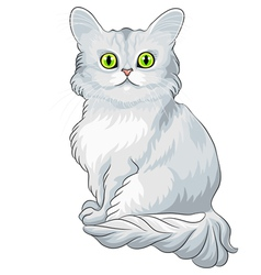 blue cat Tiffany with green eyes vector image