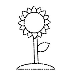 beautiful sunflower symbol vector image