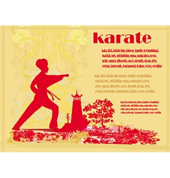karate Grunge card vector image