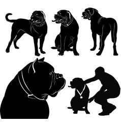 Set of silhouettes of dogs dogue de bordeaux vector