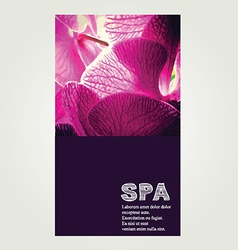 Spa poster vector image