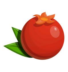 whole pomegranate icon cartoon style vector image